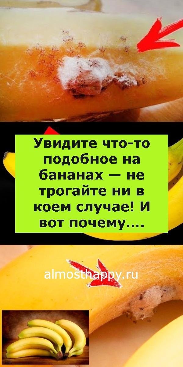Увидите что-то подобное на бананах — не трогайте ни в коем случае! И вот почему….