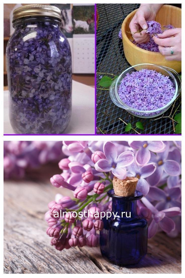 Засыпьте цветы сирени в банку и залей растительным маслом