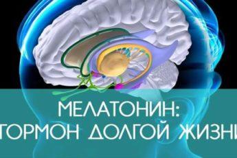 Мелатонин — залог долголетия. Способ поднять его уровень в организме