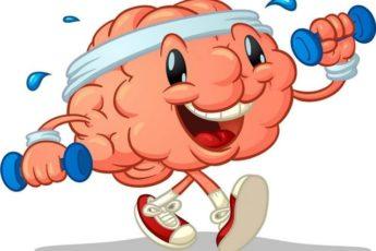 Три простых совета, которые помогут сохранить мозг молодым и здоровым 1