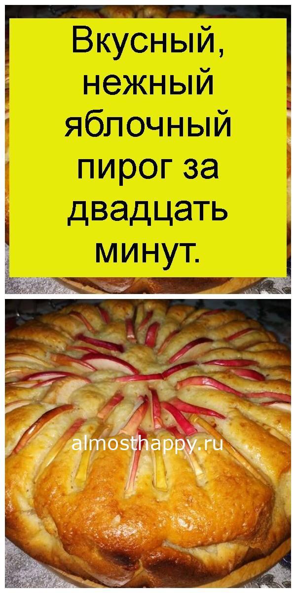 Вкусный, нежный яблочный пирог за двадцать минут 4