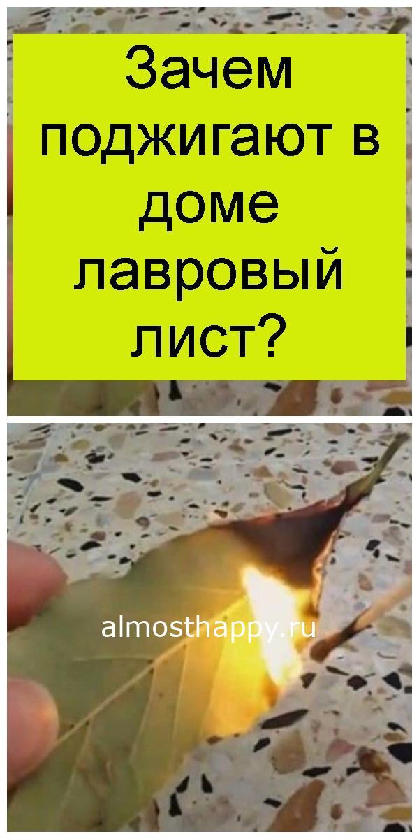 Зачем поджигают в доме лавровый лист 4