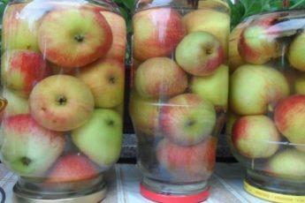 Моченые яблоки — самый простой и вкусный рецепт заготовки на зиму 1