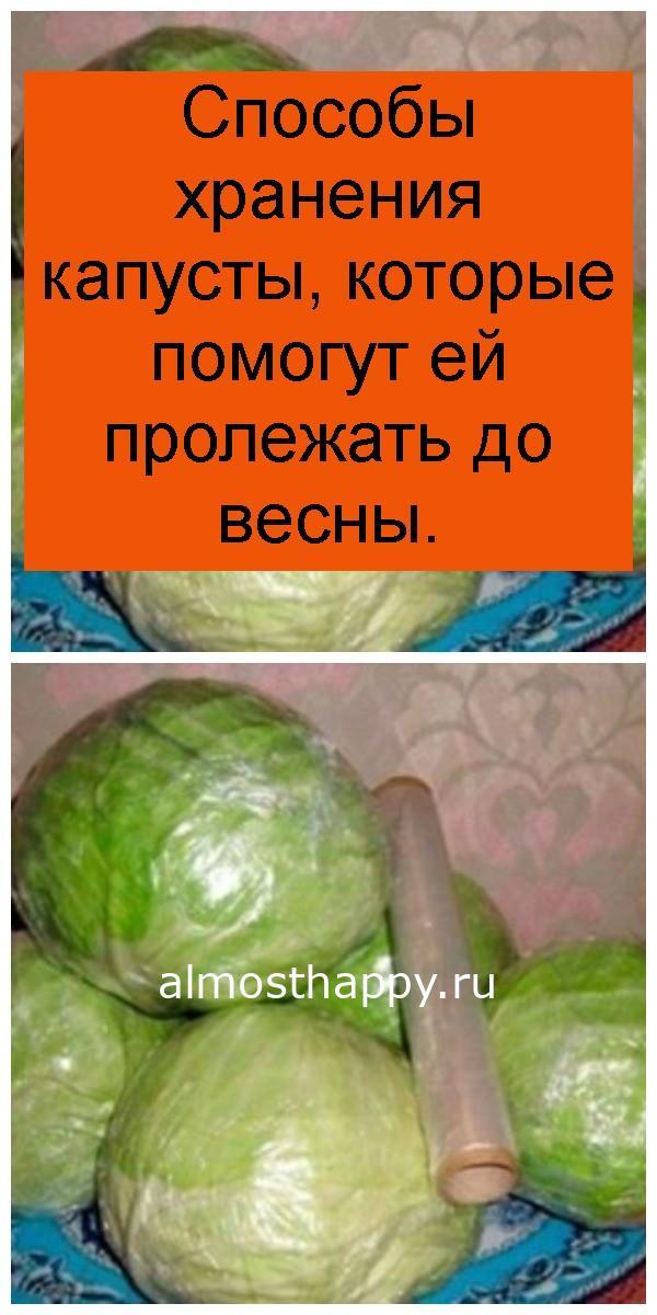 Способы хранения капусты, которые помогут ей пролежать до весны 4